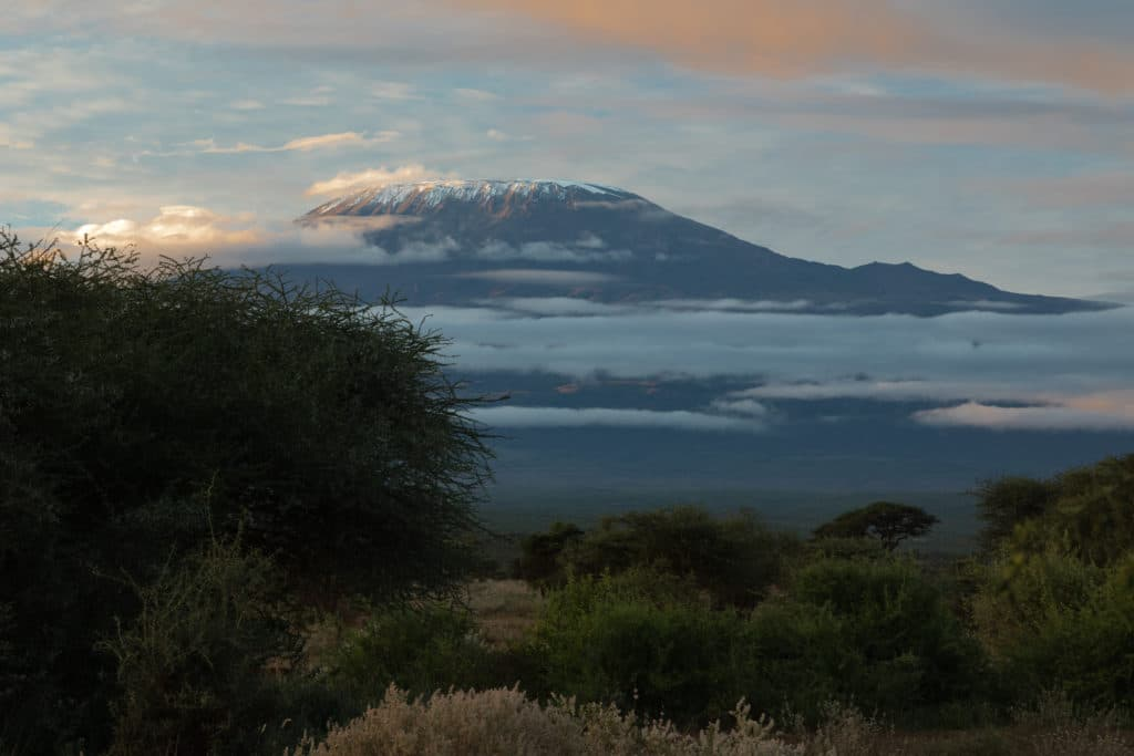 Bespoke Safaris - The view of Mount Kilimanjaro from the tented accommodation at Zebra Plains Amboseli